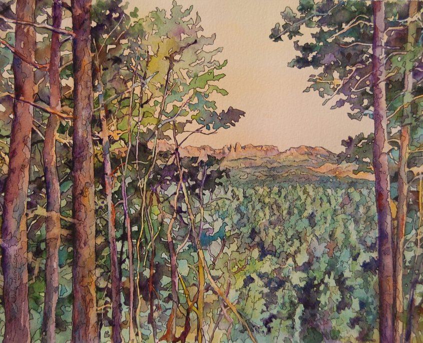 Black Hills Dawn by Judy Thompson