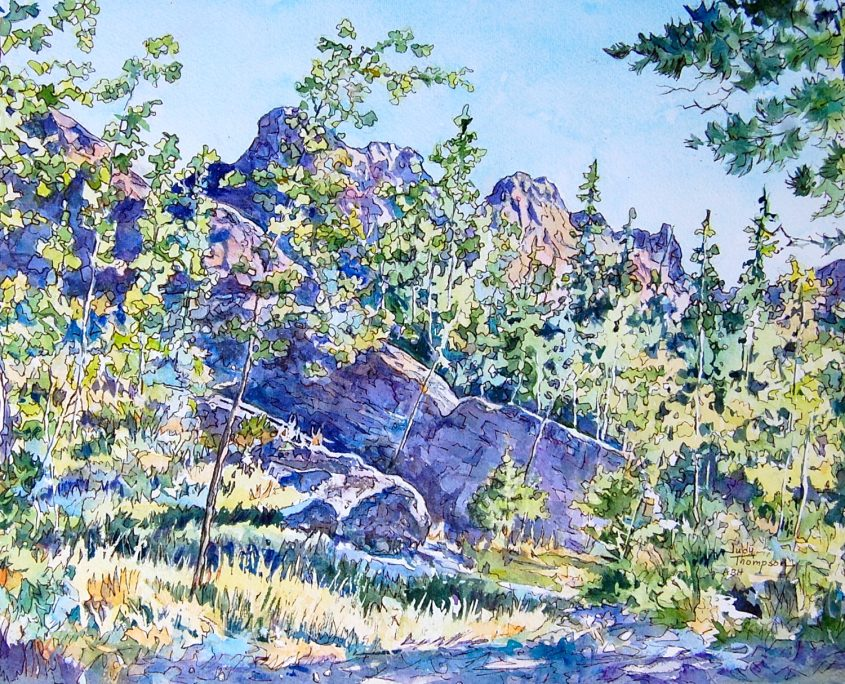 Cool shadows invite a respite in this Black Hills scene.