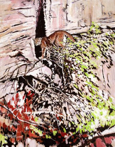 Impression Cougar
